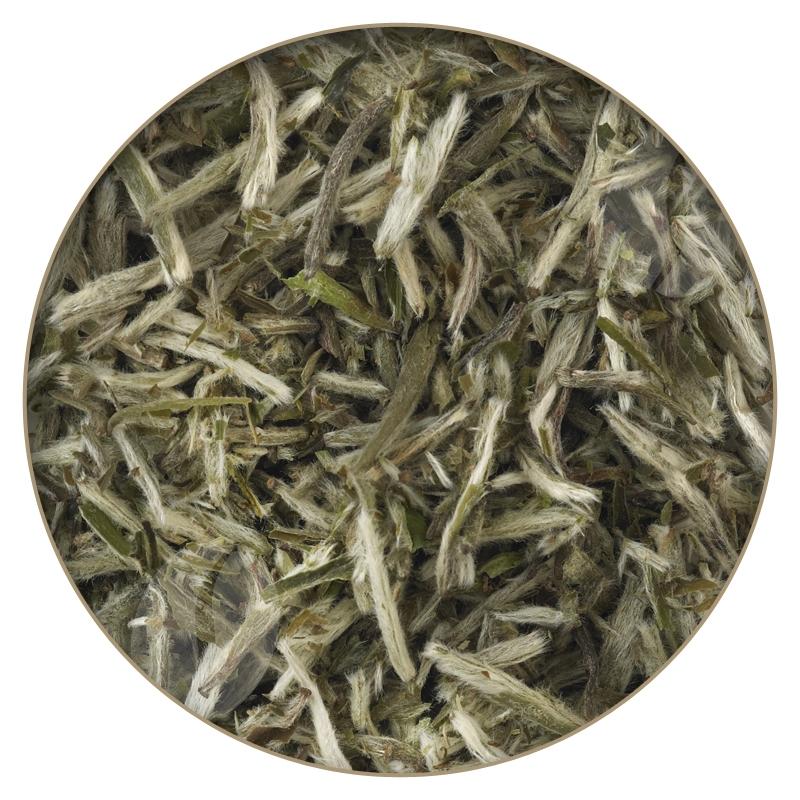 ef4a95d7fc8 Teapigs Silver Tips White Tea · Teapigs Silver Tips White Tea. « »